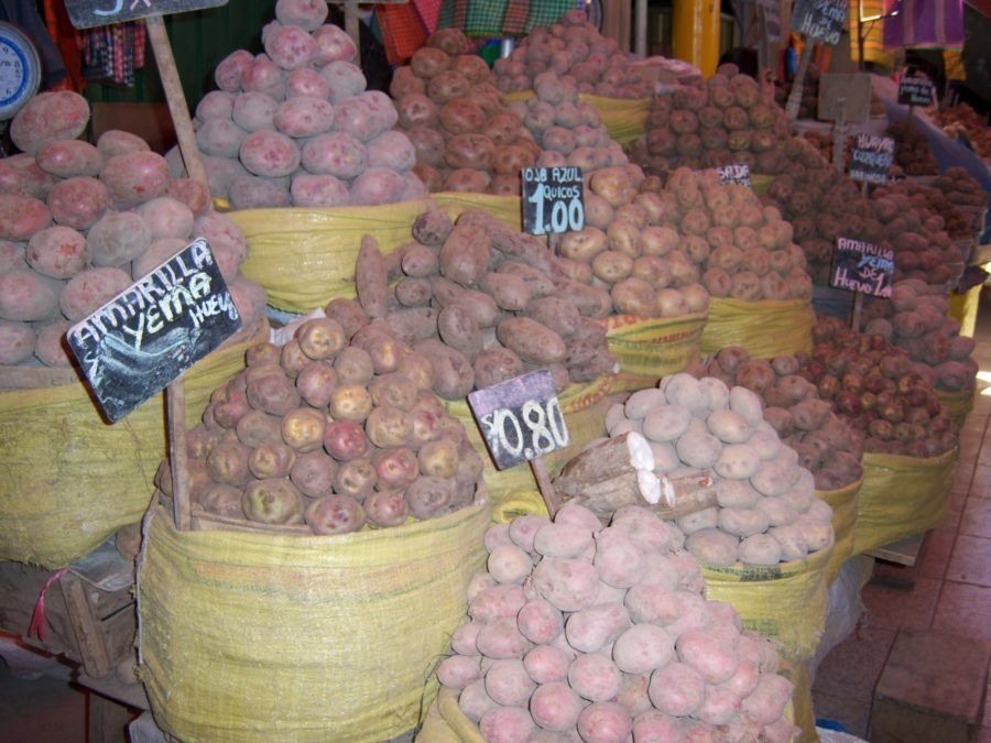 marché de pommes de terre