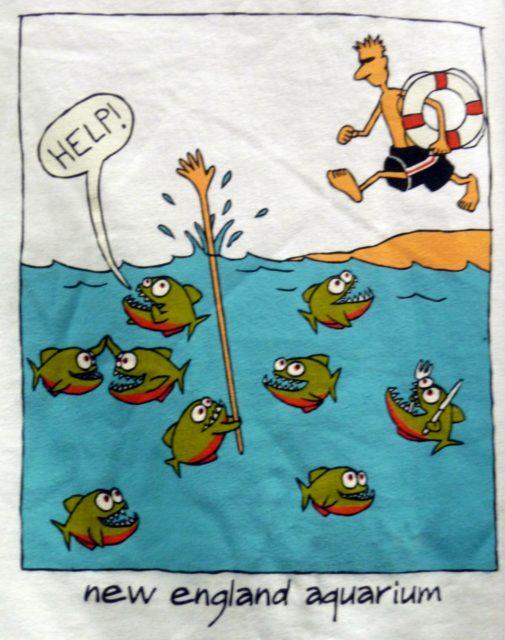 T-shirt drôle